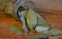 5  способов применения лаврового листа в борьбе с тараканами