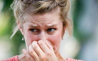 Способы избавления от запаха тараканов в квартире: неприятные запахи в шкафу, на кухне. Общие рекомендации