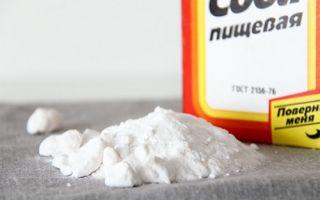 Как избавиться от тараканов при помощи соды? Лучшие народные способы с луком, сахаром, желтком. Важные правила и хитрости