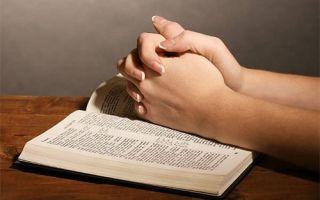 Как молитва помогает избавиться от тараканов в квартире?