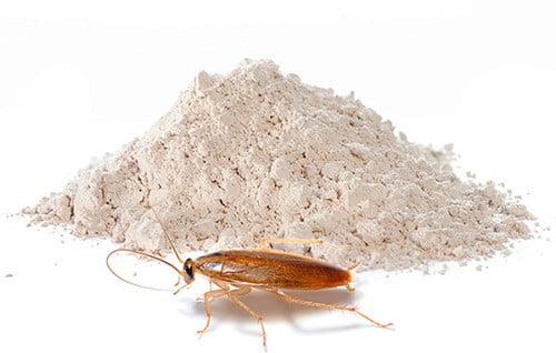 дуст порошок от тараканов