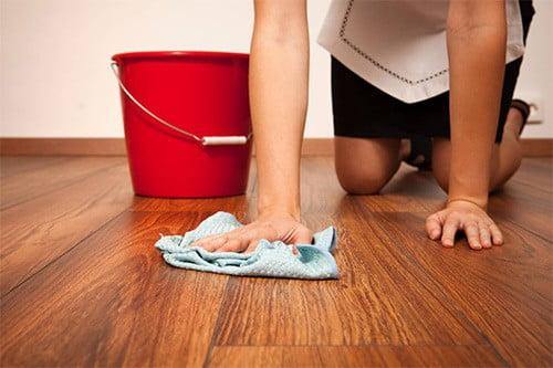 11 советов, как избавиться от тараканов в доме
