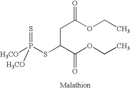 формула Малатиона