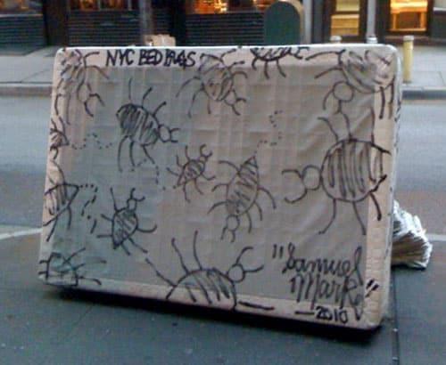 рисунки клопов на подушке