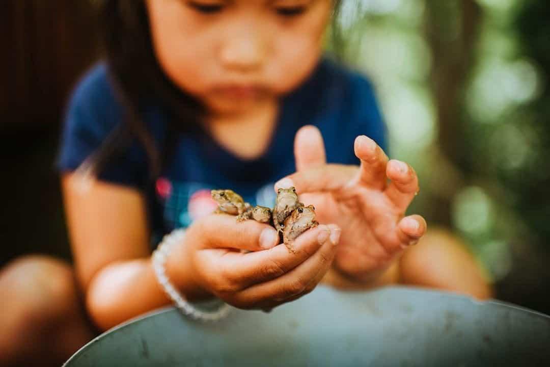 ребенок играется с насекомым