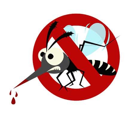 нет комарам