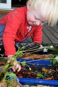 ребенок играет с насекомыми