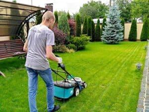 Как нужно правильно ухаживать за газоном